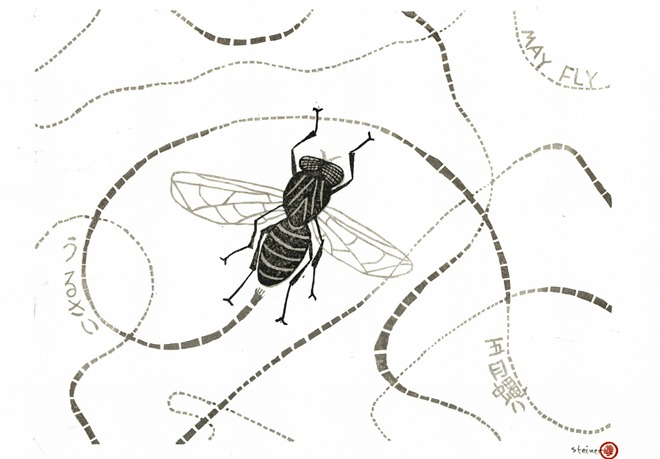 A Swarm Of Japanese Flies Kyoto Journal