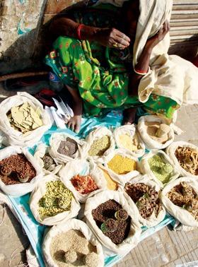 spices-chai2