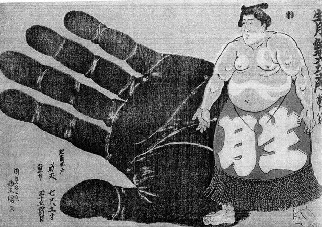 sumo-hand