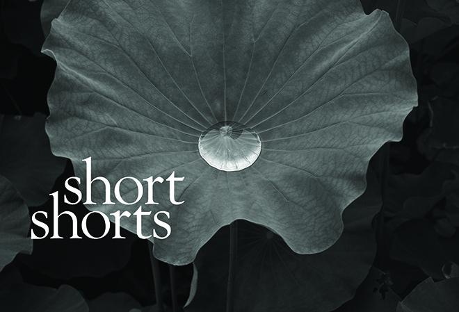 shortshorts2