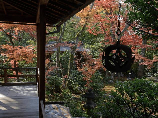 Daiho-in Temple garden Kyoto autumn Stephen Mansfield
