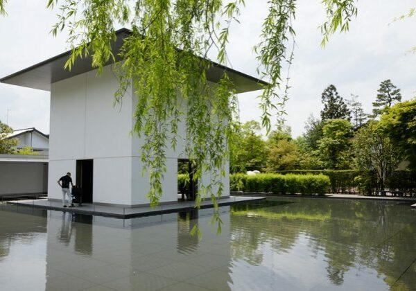 DT Suzuki Museum